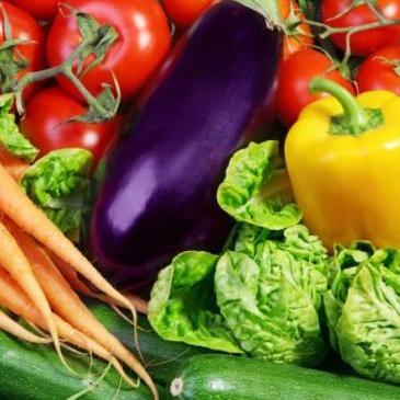 Насіння Овочів Євро пакет