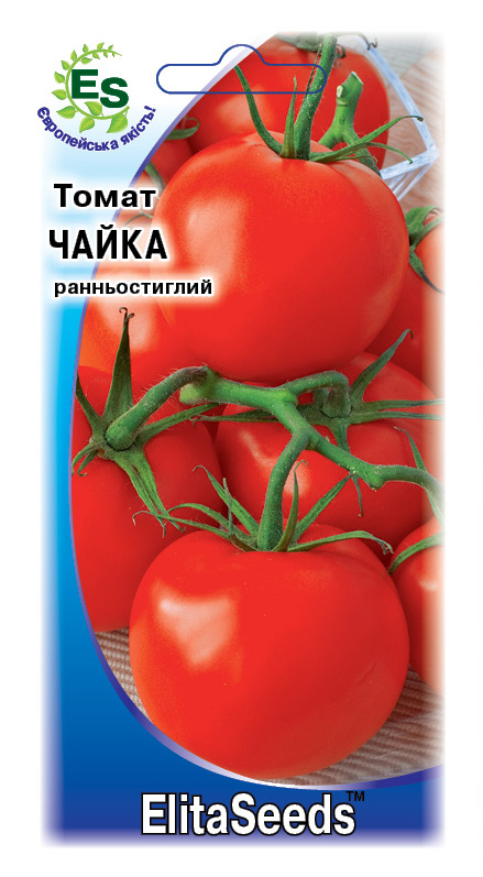 Чайка томат